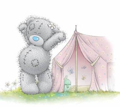 telttaan