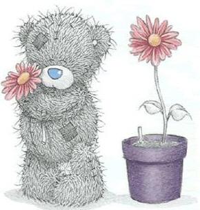 elämän kukkanen